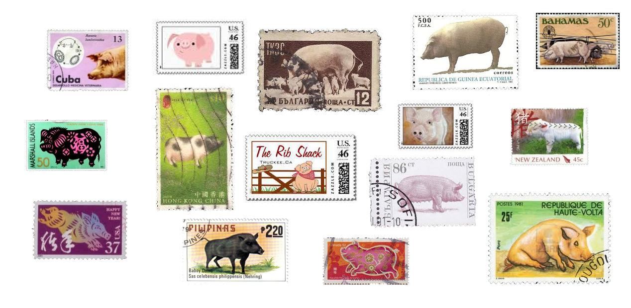 Briefmarken der Welt mit eins gemeinsam ... das Schwein