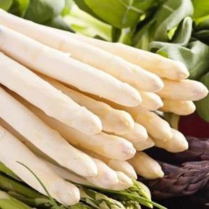 Frisch geschnittene weißer Spargel