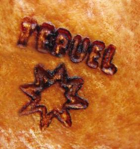 Logo Bezeichnung Herkunft Teruel